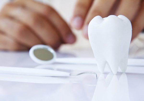 sector dental